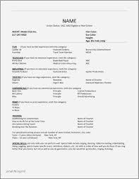 Resume Examples For Director Of Nursing Elegant Resume With Lovely