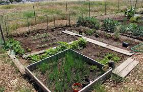 Small Picture Garden plot ideas