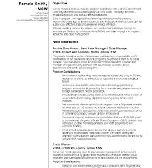 Social Worker Resume Example Magnificent Example Social Work Resume Federal Social Worker Resume Writer
