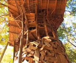 Tour The Worldu0027s Largest Treehouse  YouTubeLargest Treehouse In America