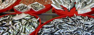 sample overfishing essay