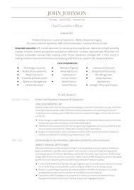 Job Description Corporate Compliance Officer Regarding Template Ceo ...