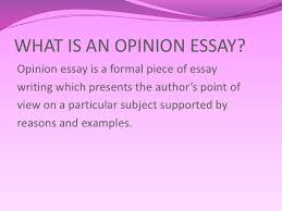 eleventh grade englishlabupb what is an opinion essay