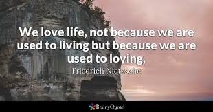 Love And Life Quotes Extraordinary Love Life Quotes BrainyQuote
