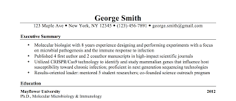 Executive Summary Resume Writing Sample George Sauers Email Ggsauers
