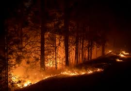 The caldor fire in california has grown to more than 60,000 acres while being zero percent contained, amid several wildfires burning in the state and across the west coast. Phrglbc4sv Zhm