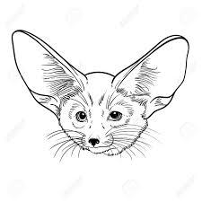 かわいい動物フェネック キツネ子供塗り絵の線形の図t シャツバッグやカバーを印刷します