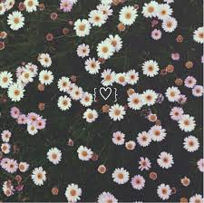 hipster flower wallpaper tumblr. Unique Tumblr Background Cool Cute Daisy Emoji Floral Flower Galaxy To Hipster Flower Wallpaper Tumblr P