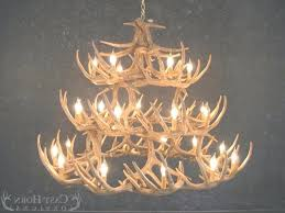real antler chandelier antler chandelier our elk pool table real whitetail deer have to do with