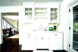 Kitchen Cabinet Doors With Glass Only Splendid