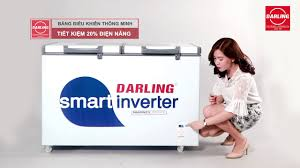Tủ đông Darling DMF - 4699 WSI