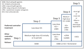 Treatment Steps According To Gina Guidelines On Asthma Ref
