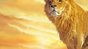 roaring lion wallpaper hd 1080p. Plain Wallpaper Lion Background And Roaring Wallpaper Hd 1080p