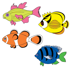 fish drawing for colouring. Modren Drawing Fish Drawing For Colouring At Getdrawings  Free  Personal In I