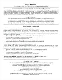 Construction Assistant Project Manager Resume Project Manager Cv Template