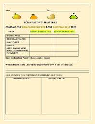 Botany Activity Compare Two Fruit Trees Pears
