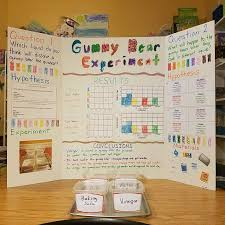 Science Project Report Adorable Pin By Denise B On Science Fair Pinterest Science Fair