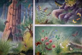 German Butterfly School Chart Science Poster