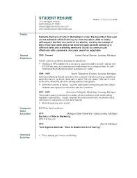 Border Patrol Resume Sample
