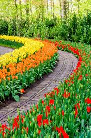 Flower Garden Wallpaper - KoLPaPer ...