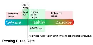 What Is The Average Pulse Rate For Adults Heart Rate Zones