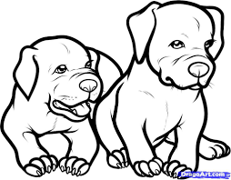 Only Pitbull Dogs Coloring Pages | How To Draw Baby Pitbulls, Baby ...