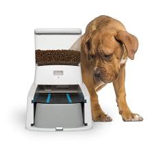 Wagz Serve Smart Feeder Automatic Smart Pet Dog Feeder