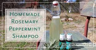 homemade rosemary peppermint shampoo homemademommy net