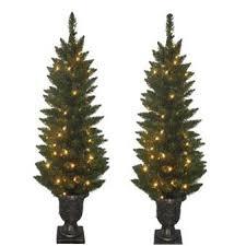 Lights Of Love Rosemary Christmas Tree The Lights Of Love Christmas Trees Small