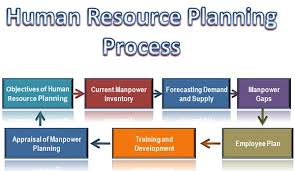 what is human resource planning process business jargons human resource planning process hrp process