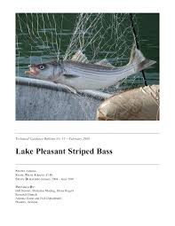 Striped bass at asu research park