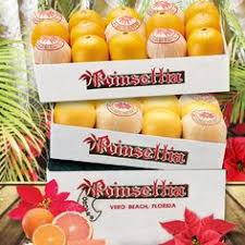 holiday citrus gifts from florida
