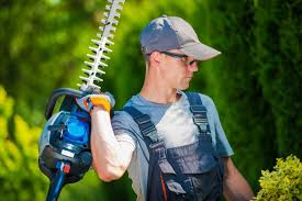 Tree Service Missoula MT - Tree Removal, Trimming, & Pruning Arborists