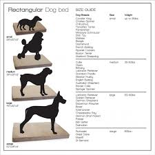 Chic Dog Bed Size Dog Bed Size Chart By Breed Bed Size Xx