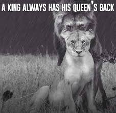 A King Always Has His Queens Back Lion Relationships Trust