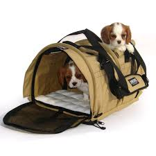 carrier dog. large two dog carrier r