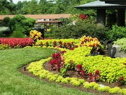 Lawn Landscape Garden Design