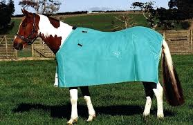 horse rug new rug horse rug sizes australia australian horse rug size chart