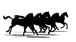 running horses black and white. Perfect White Herd Of Horses Runs And By The Front View Black Silhouette On White  Background Stock Video Footage  Videoblocks In Running Horses Black And White
