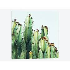 cactus love photographic print on canvas on cactus wall art framed with cactus wall art joss main