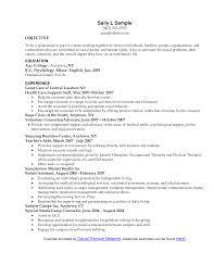 Social Work Internship Resume Objective Professional Resume