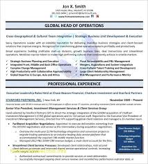 Sample Resume For Mis Executive Lovely Resume Fresh Senior Executive