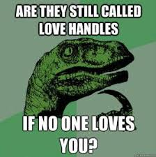 funny -meme -about- love- handles | Funny Facts | Pinterest | Love ... via Relatably.com