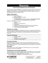 What Should A Resume Include Resumes For College Summary 2015