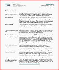 Examples Of Summaries For Resumes 45 Super Examples Of Executive Summary For A Resume