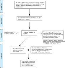 Prisma Flow Chart Searching Google Scholar For