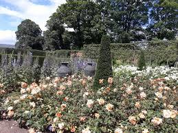 alnwick castle gardens northumberland