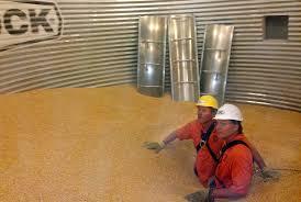 Grain Bin Home House Plans Silo Grain Grain Silo Homes Corn Silos For Sale