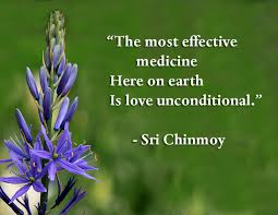 Quotes On Love Fascinating Quotes On Love Sri Chinmoy Quotes