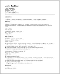Staff Adjuster Sample Resume Cool Sample Of Great Resume Insurance Sample Resume Sample Great Formats